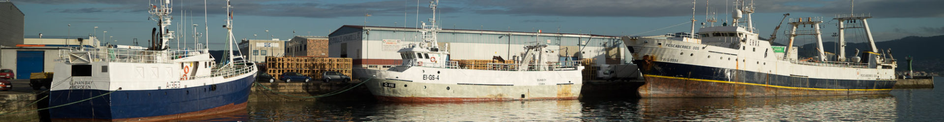 Calvo Group renews its fleet with tuna freezer.